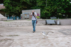 Photographer trying to take a picture of gull Stock Photography
