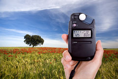 Photographer using lightmeter to measure light Royalty Free Stock Photo