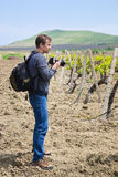 Photographer and vineyard Royalty Free Stock Photography