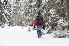 Photographer in winter landscape Stock Images