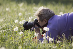 Photographer woman takes a photo of flowers in a field stock images