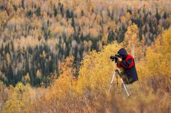 Photographer at Work stock photography
