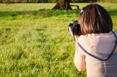 Photographer at work in nature. A female photographer is taking a picture in a field Stock Images