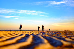 Photographers on the beach. March 13, 2017, Tianjin, China,Photographers on the beach.It is reported that relictus is a national and global endangered birds Stock Photo