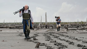 Photographers on a bog. Royalty Free Stock Photos