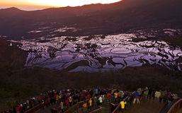 Photographers at the Rice Terraces. Dozens of photographers line across the railing at Duoyishi viewing platform in Yuanyang county in southern Yunnan province Royalty Free Stock Image
