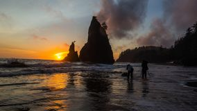 Photographers Taking Pictures of Sea Stacks During Sunset. This is the pictures of two photographer taking picture or sea stacks during sun set at Rialto Beach Royalty Free Stock Photography