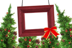 Photographic frame and Christmas trees Royalty Free Stock Photo