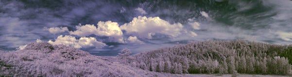 Photographie à infrarouge de montagne d'Ural du sud Photo stock