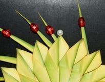 Photographie d'isolement par objets rouges abstraits Images libres de droits