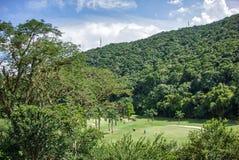 Photographie de nature, détendant au Venezuela Image stock