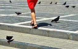 Photographie de rue en Brasov, Roumanie images libres de droits