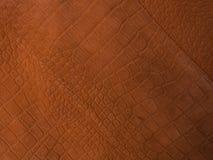 Photographie de tendance sur le thème des couleurs réelles pour cette saison - une nuance d'orange image stock