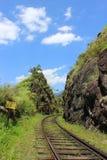 Photographie de voyage : une voie de chemin de fer qui passe par le paysage de montagne Image stock