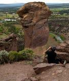 Photographie des grimpeurs de roche sur le visage de singe Image stock
