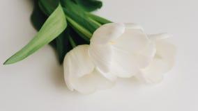 Photographie des tulipes blanches sur la table Foyer peu profond n Photos stock