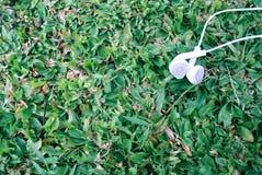 Photographie extérieure d'objet d'écouteur sur le fond d'herbe image libre de droits