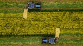 Photographie a?rienne de fauchage de tracteur de graine de colza avec un bourdon image libre de droits