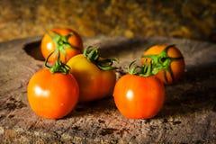 Photographie toujours d'art de la vie avec des tomates Photographie stock