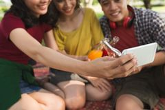 Photographing with friends. Close-up image of young women photographing with her friends at picnic Royalty Free Stock Image