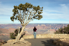 Photographing at the Grand Canyon Stock Image