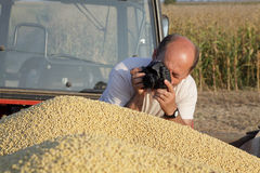 Photographing harvest Stock Photos