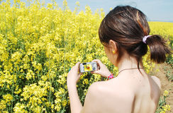 Photographing Nature Stock Photo