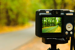Photographing nature Royalty Free Stock Photos