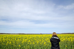 Photographing rape field. A woman photographs a scenic rape field Royalty Free Stock Photo
