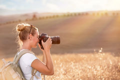 Photographing ripe wheat field Royalty Free Stock Photos