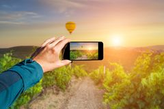 Photographing with smartphone in hand. Travel concept. Sunset on the vineyard Stock Image