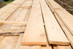 Photographing timber. In the backyard Stock Photos