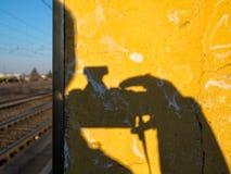 Photographng drev, på Parma i Italien quailed royaltyfri foto