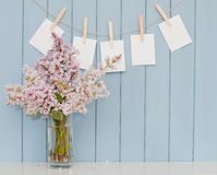 Photographs on the clothespin and bunch of lilac Stock Photos