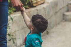 Photography of Baby Holding The Hand of Person stock image