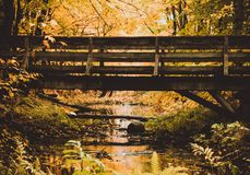 Photography of a bridge over a small river stock photo