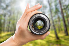 Photography camera lens concept. Photography view camera photographer lens forest trees lense through video photo digital glass hand blurred focus people royalty free stock images