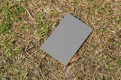Photography grey card in sunshine Royalty Free Stock Images
