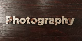 Photography - grungy wooden headline on Maple  - 3D rendered royalty free stock image Royalty Free Stock Image