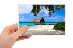 Photography in hand royalty free stock photography