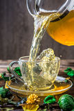 Photography mug of green tea Stock Image