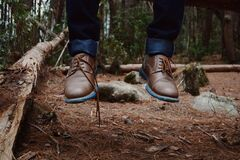 Photography of Person Wearing Brown Leather Shoes Near Brown Log on Green Forest during Daytime Stock Photos