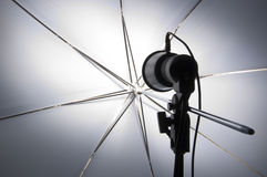 Photography set up with umbrella. Reflecting modeling lamp Royalty Free Stock Photos