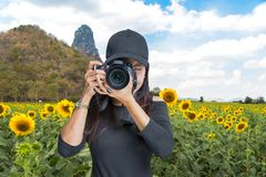 Photography and Traveler  asian women covering her face with the camera in the sunflower field Royalty Free Stock Image