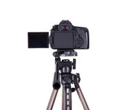 Photography and videography concept - rear view of modern dslr c. Amera with blank screen on tripod isolated on white background Royalty Free Stock Photos