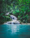 Photography Of Waterfalls Between Trees Royalty Free Stock Photos