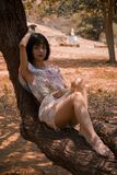 Photography of a Woman Laying on Tree Trunk Royalty Free Stock Images
