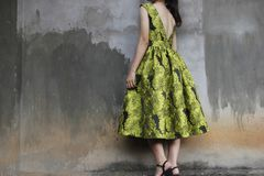 Photography of a Woman Wearing Green Dress Royalty Free Stock Photography