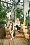 Photography of Women Sitting on Wooden Stairs royalty free stock image