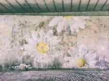 Photomontage de uma parede resistida com margarida do goivo Fotografia de Stock